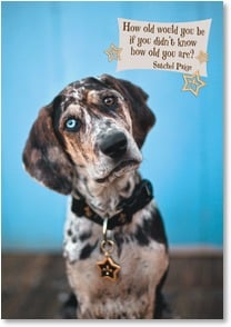 Birthday Card - I'd say you were just a pup! | Grace Chon | 2002516-P | Leanin' Tree