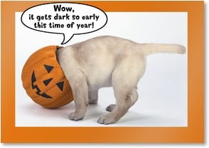 Halloween Card - It gets dark so early this time of year! | Lisa and Mike Husar | 2002714-P | Leanin' Tree