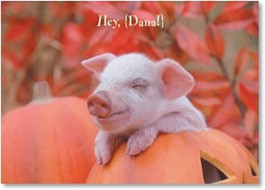 Halloween Card {Name} - It's okay to be a little piggie! | Alan and Sandy Carey | 2002752-P | Leanin' Tree