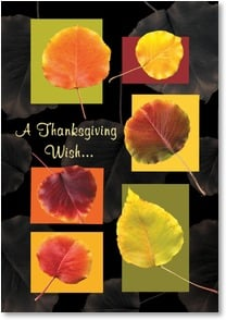 Thanksgiving Card - A Season of Beauty and Abundance | Bee Sturgis | 2002766-P | Leanin' Tree