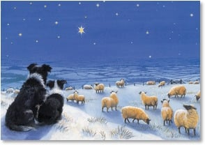 Christmas Card - The Christmas star shines down on you | Chrissie Snelling | 2002989-P | Leanin' Tree