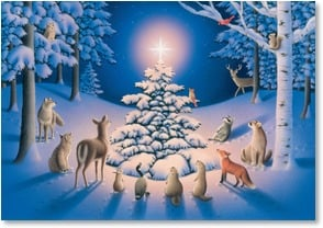 Christmas Card - May the light of Christmas shine | Mike Speiser | 2002999-P | Leanin' Tree