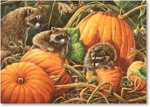 Thanksgiving Card - May your day be a gathering of thankfulness and joy! | Wanda Mumm | 2003326-P | Leanin' Tree