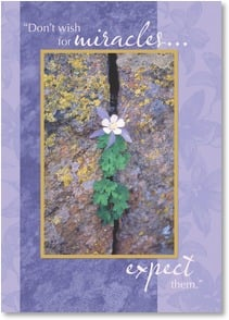 Encouragement & Support Card - Don't wish for miracles...expect them.  I believe in you. | John Fielder | 2003501-P | Leanin' Tree