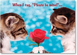 Valentine's Day Card - I'm not just kitten! | Michael Quackenbush | 2003698-P | Leanin' Tree