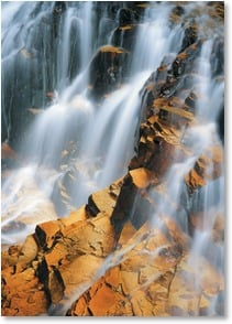 Blank Card - Cascade Creek Waterfall - San Juan Mountains | John Fielder | 2003822-P | Leanin' Tree