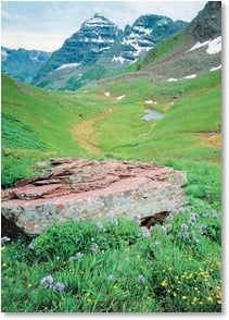 Blank Card - Maroon Peak Wildflowers - Maroon Bells | John Fielder | 2003825-P | Leanin' Tree