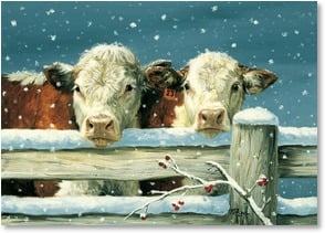 Christmas Card - Cows in the Snow - Merry Christmas and Happy New Year | Linda Picken | 2003911-P | Leanin' Tree