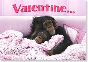 Valentine's Day Card - Monkey Talk w/ You snuggled your way into my heart.  - 21657 | Leanin' Tree