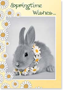 Easter Card - Have a hoppy Easter holiday! - 21688 | Leanin' Tree