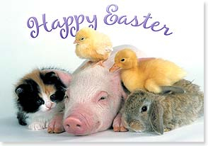 Easter Card - Wishing you a day full of warm fuzzies! - 21697 | Leanin' Tree