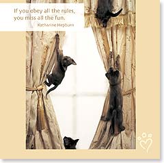 Birthday Card - Funny | Birthday Rules to Live By | Rachael Hale® | 23100 | Leanin' Tree