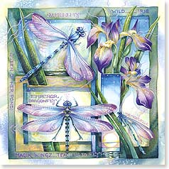 Blank Card with Quote / Saying - Teach Us to Fly! | Jody Bergsma | 23365 | Leanin' Tree