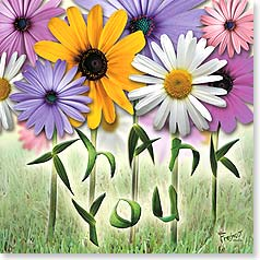 Thank You & Appreciation Card - Thank You So Much | Connie Haley | 23380 | Leanin' Tree