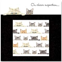 Birthday Magnet Card - Peeking Kitties | Robert George Bowdige | 24022 | Leanin' Tree