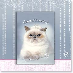 Birthday Magnet Card - Queen of Everything | Rachael Hale® | 24045 | Leanin' Tree