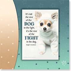 Encouragement Magnet Card - The Size of the Fight In the Dog | Rachael Hale® | 24071 | Leanin' Tree