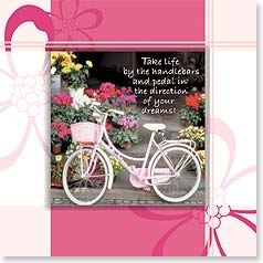 Birthday Magnet Card - Take life by the handlebars... | John and Debora Scanlan | 24074 | Leanin' Tree