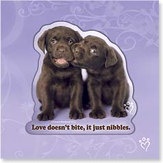 Love Magnet Card - Love Nibbles | rachaelhale&amp;reg; Dissero Brands | 24080 | Leanin' Tree