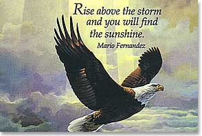 Magnet - Staff Pick - Rise above the storm... | Mario Fernandez | 25078 | Leanin' Tree