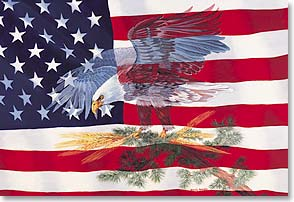 Magnet - Patriotic | American Flag and Eagle | Sandy Rusinko | 25507 | Leanin' Tree