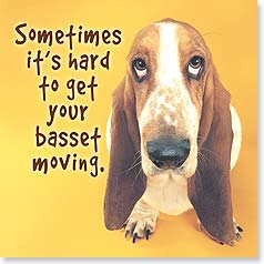 Magnet - Get Your Basset Moving | Getty Images | 26101 | Leanin' Tree