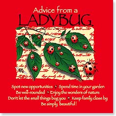 Magnet - Advice from a Ladybug | Your True Nature® | 26333 | Leanin' Tree
