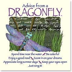 Magnet - Staff Pick - Advice from a Dragonfly | Your True Nature® | 26392 | Leanin' Tree