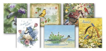 Boxed Note Assortments - Feathered Friends - 28261 | Leanin' Tree