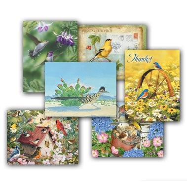 Blank Note Card Assortment<BR/>2 each of 6 designs - Feathered Friends - 28267 | Leanin' Tree