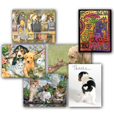 Boxed Blank Note Cards<BR/>3 each of 4 designs - Cats & Dogs  - 28268 | Leanin' Tree
