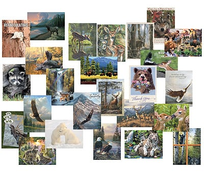 Everyday Card Value Pack<BR/>1 each of 25 designs - Wildlife Collection - 28663 | Leanin' Tree