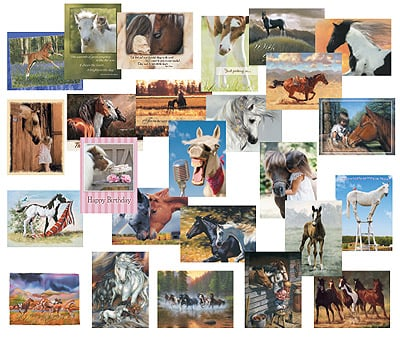 Everyday Card Value Pack<BR/>1 each of 25 designs - Horses  - 28665 | Leanin' Tree