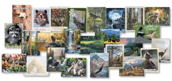 Everyday Card Value Pack<BR/>1 each of 25 designs - Wildlife Collection - 28669 | Leanin' Tree
