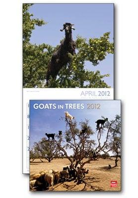 Goats In Trees Calendar 2012 Wall Calendar -...