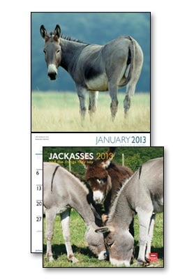 Wall Calendar - Jackasses 2013 Wall Calendar - 28815 | Leanin' Tree