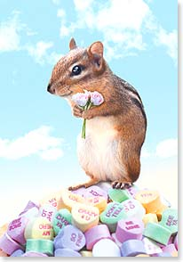 Valentine's Day Card - Love you more than there are ways to say it! | Michael Quackenbush | 29397 | Leanin' Tree