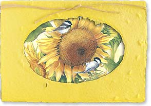 Friendship Card - Just wanted to share a little sunshine. | Sherri Buck Baldwin | 29659 | Leanin' Tree