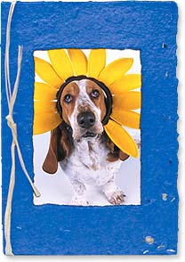 Thinking of You Seed Card - A Little Sunshine | Kimball Stock | 29670 | Leanin' Tree