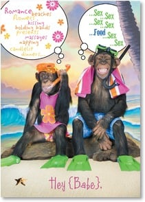Anniversary Card - Monkeying Around on the Beach | Kimball Stock | 2_2000163-P | Leanin' Tree