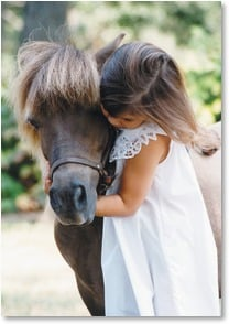 Blank Card - Pony Hugs! | Christina Bynum Breaux | 2_2000832-P | Leanin' Tree