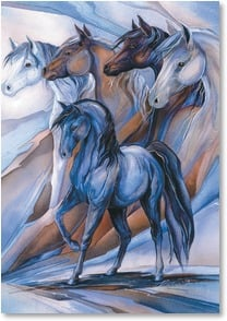 Birthday Card - Believe In Your Dreams | Jody Bergsma | 2_2001864-P | Leanin' Tree