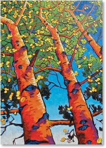 Congratulations Card - Here's to looking up at you! | Matthew Sievers | 2_2002878-P | Leanin' Tree