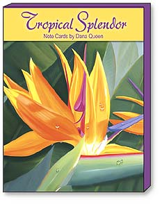 Boxed Blank Note Cards - Blank Note Cards | Tropical Splendor - 34622 | Leanin' Tree