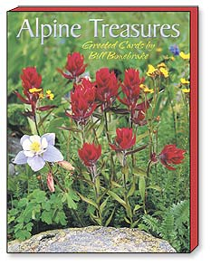 Boxed Blank Note Cards<BR/>3 each of 4 designs - Blank Note Card | Alpine Treasures | Bill Bonebrake | 34635 | Leanin' Tree