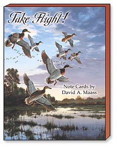 Boxed Blank Note Cards<BR/>3 each of 4 designs - Take Flight! - 34652 | Leanin' Tree