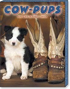 Boxed Blank Note Cards<BR/>3 each of 4 designs - Cow Pups by Robert Dawson - 34666 | Leanin' Tree