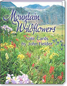 Boxed Blank Note Cards-3 each of 4 designs - Mountain Wildflowers by John Fielder - 34677