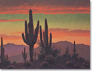 Boxed Blank Note Cards<BR/>3 each of 4 designs - Blank Note Card | Saguaros | Russell White | 35039 | Leanin' Tree