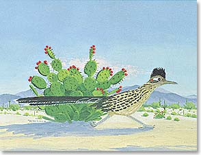 Blank Note Card Set<BR/>8 of 1 design - Note Card Set | Blank | The Desert Rogue | Ruth M. Lau | 35042 | Leanin' Tree